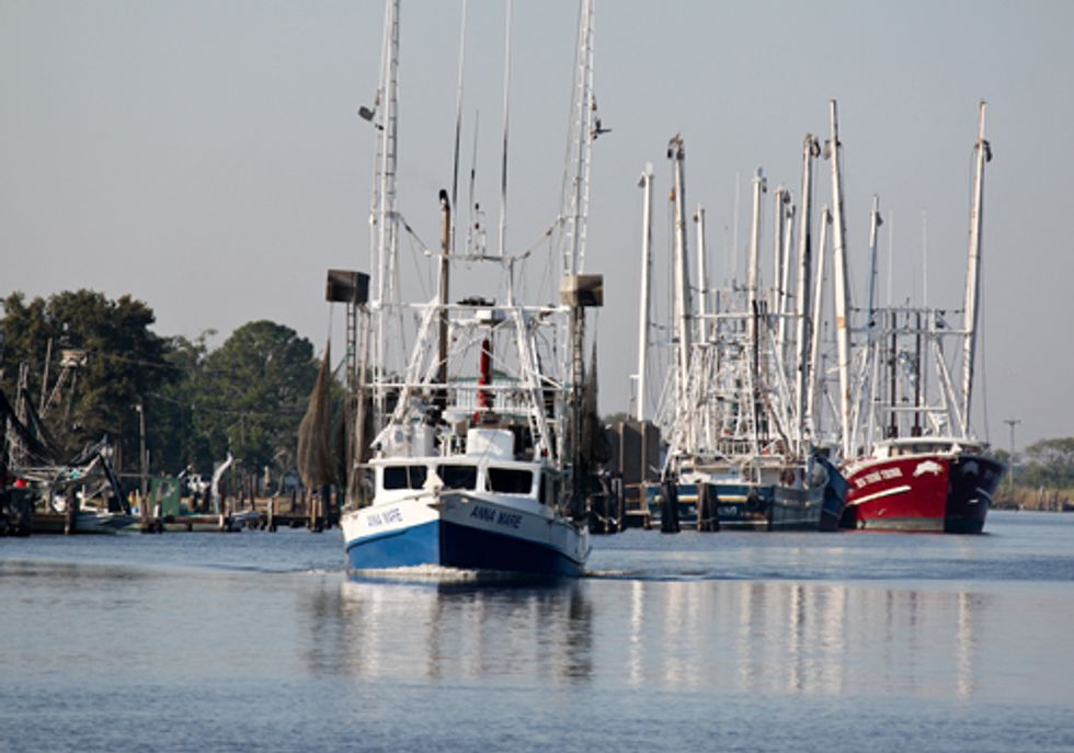 New Science-Based Catch Limits Announced to Stop Overfishing