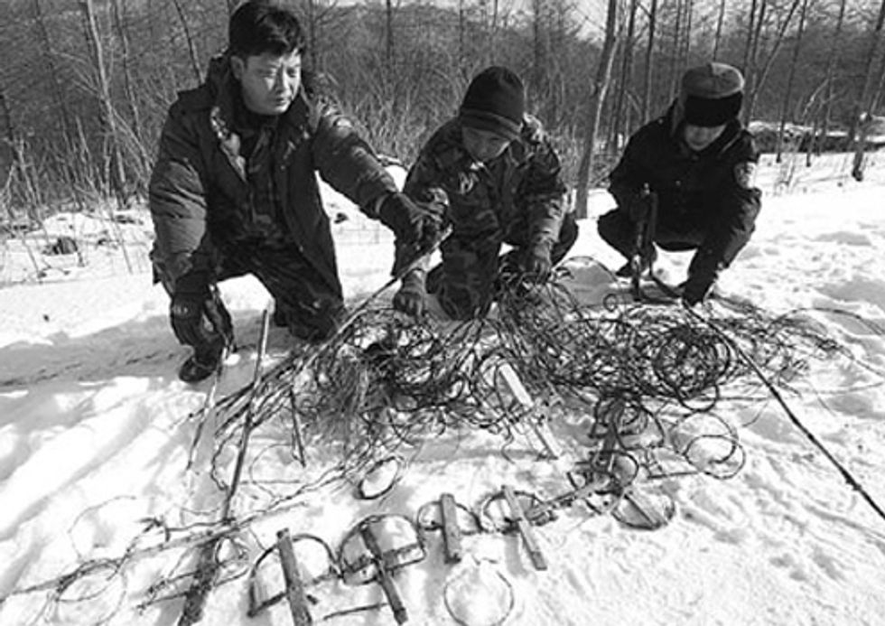 Group Clears Tiger Snares in China
