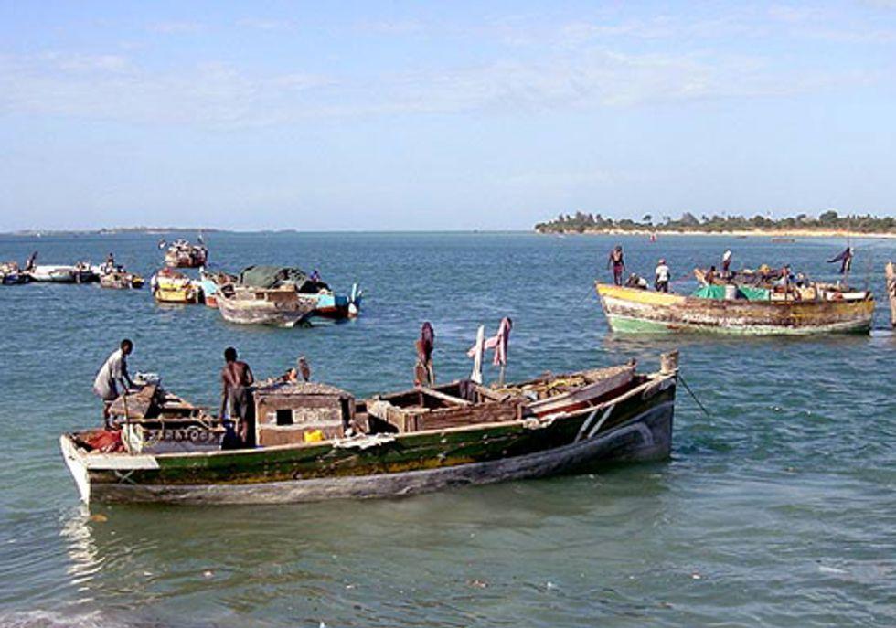 Why Fishermen Keep Fishing Despite Dwindling Catches