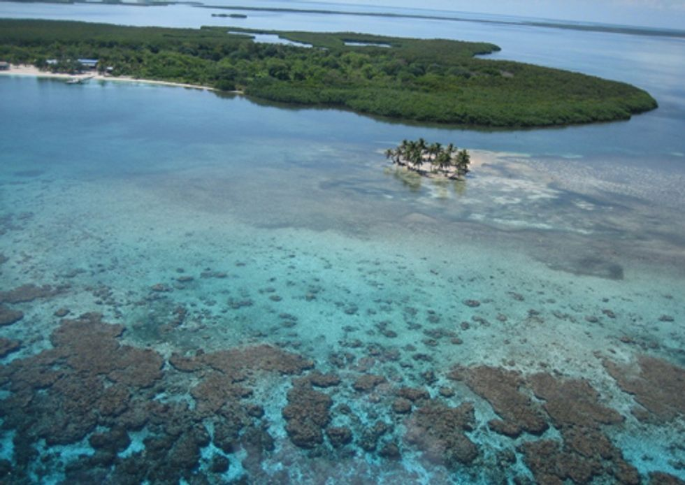 Mesoamerican Reef Management Insufficient for Necessary Protection