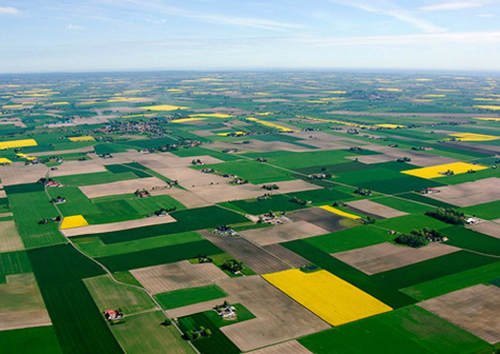 What's Influencing the 2012 Farm Bill Debate?