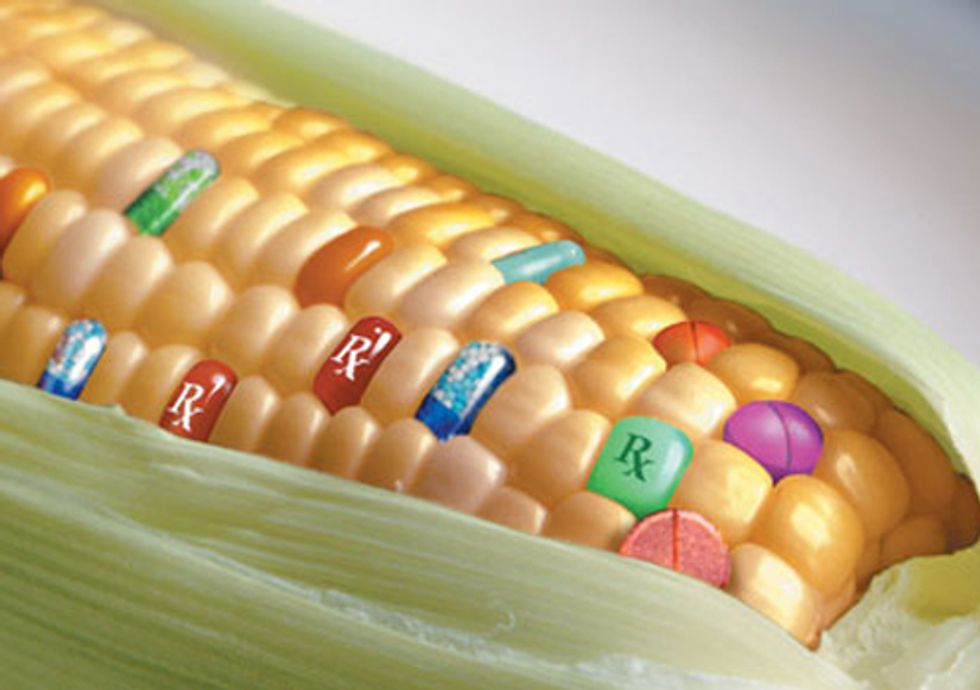 Set the Record Straight on Monsanto One Tweet and Facebook Post at a Time