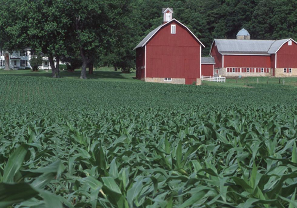 Ad Campaign Targets Farm Bill Conservation Cuts