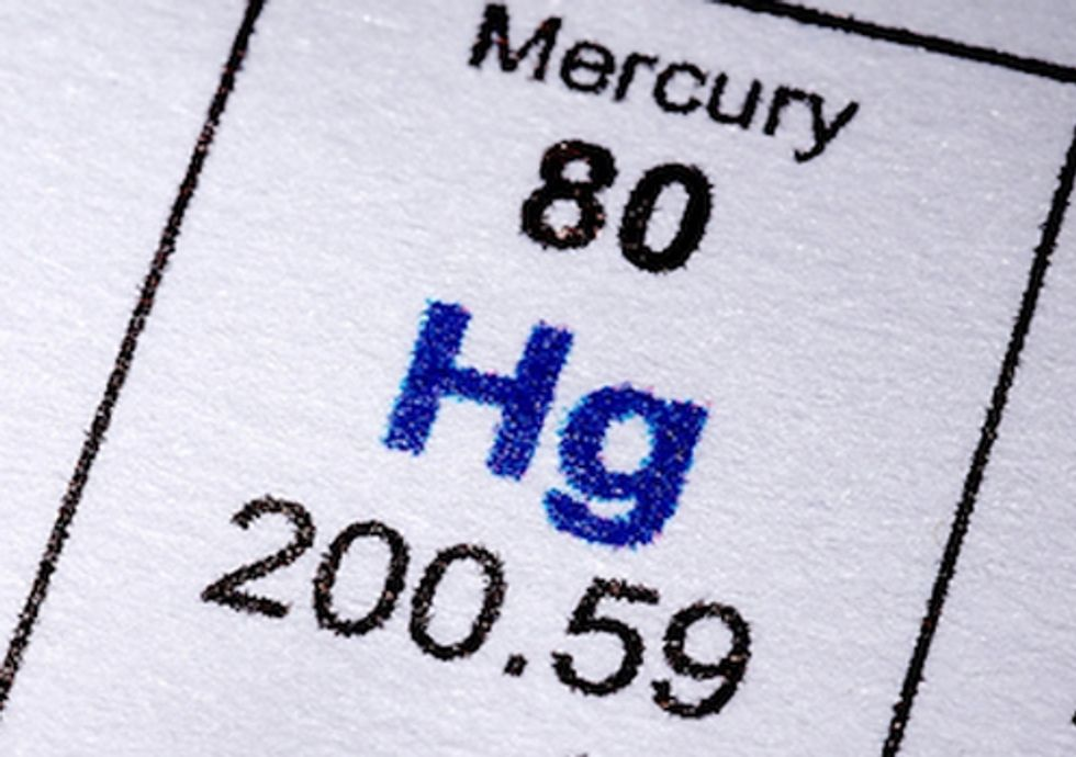 Polluters Move to Block Landmark Mercury Protections