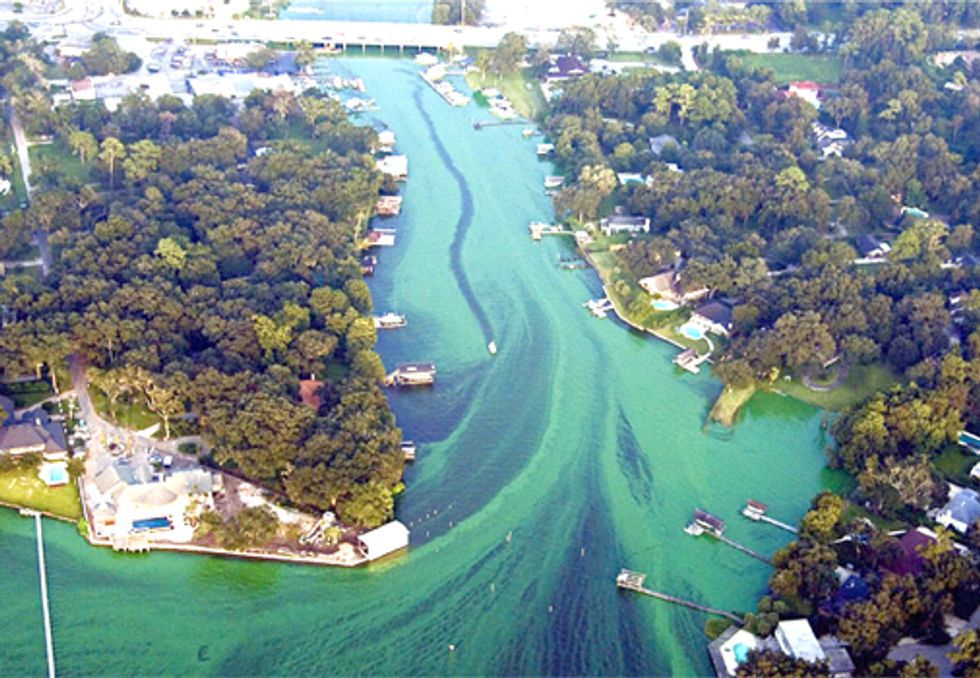 EPA Underestimated Number of Polluted Florida Streams, Lakes and Rivers