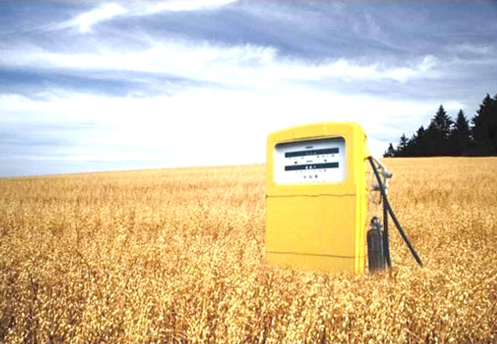 Four New Feedstocks Fail to Meet Renewable Fuel Standard for Biofuels