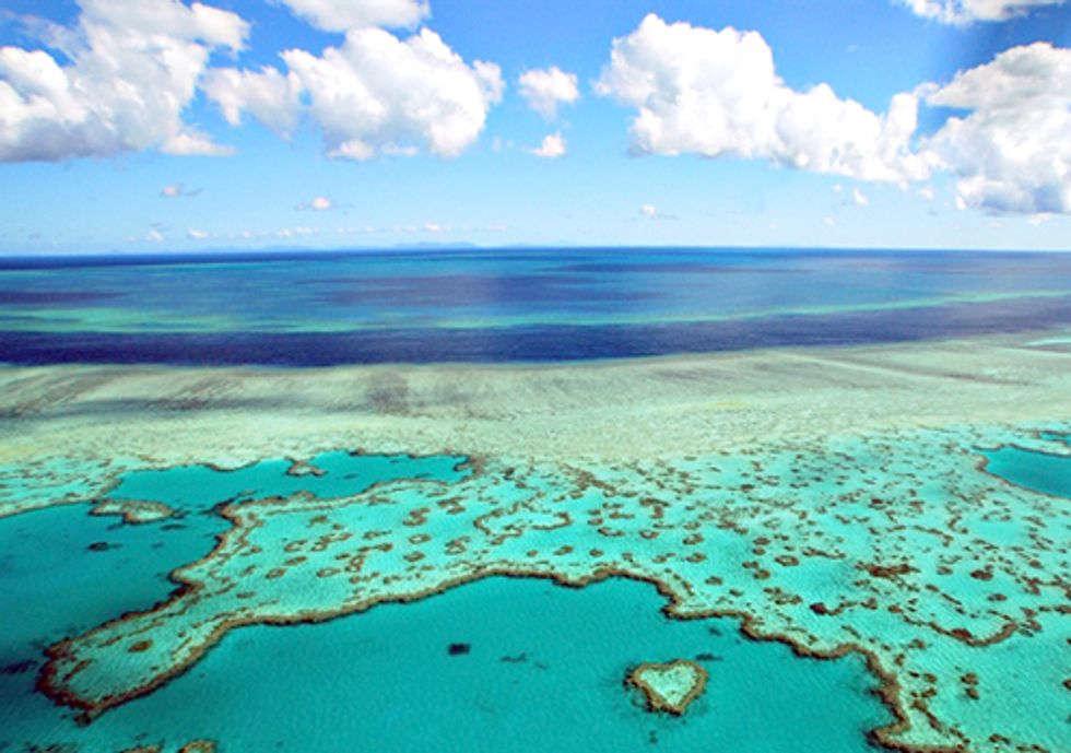 ACTION: Dredging Inside the Great Barrier Reef? Really?