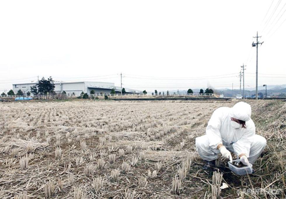 Radioactive Contamination Lingers in Fukushima One Year Later