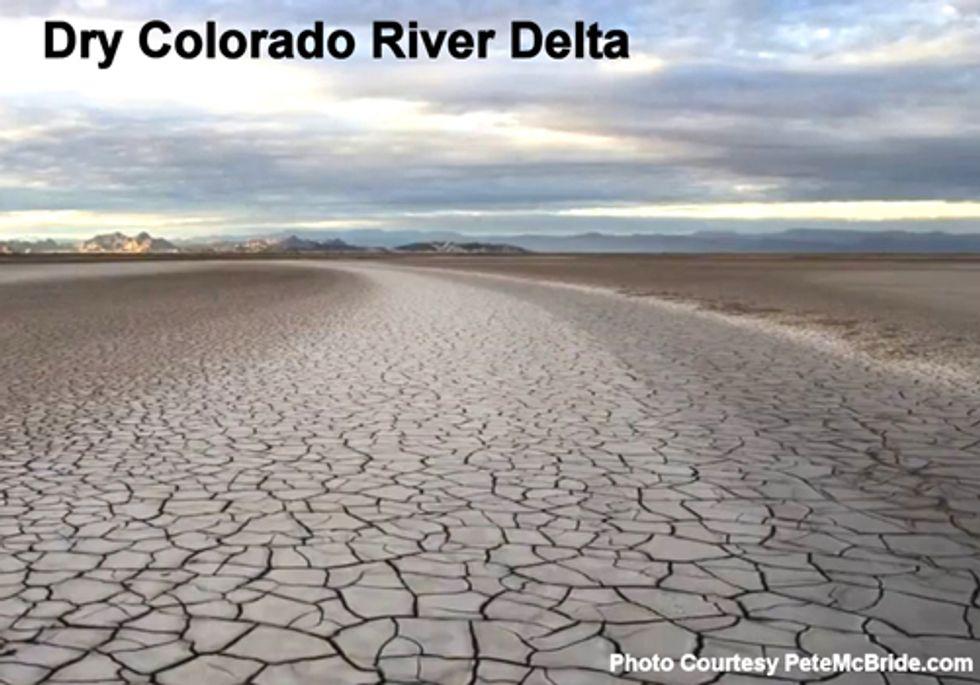 Binational Pact can Revive Colorado River Delta