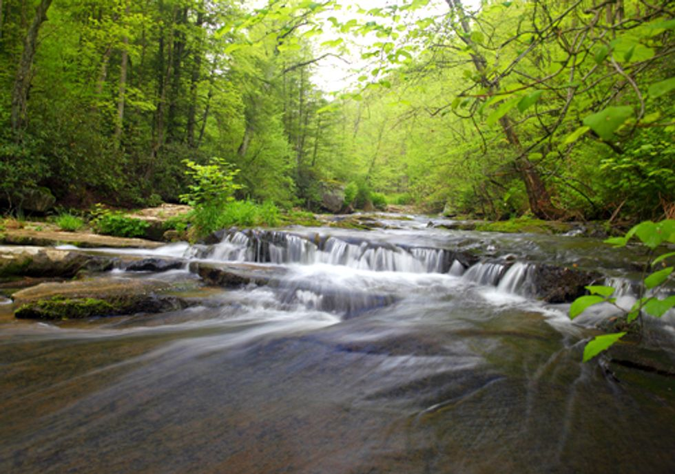 Potomac Riverkeeper Appeals Decision on Clean Water Act Permit