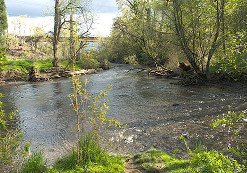 The Johnson Creek Watershed—An Oasis in the Urban Jungle