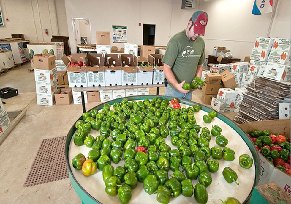 Farm Bill Platform Reflects Urgent Needs of Farmers and Food Entrepreneurs