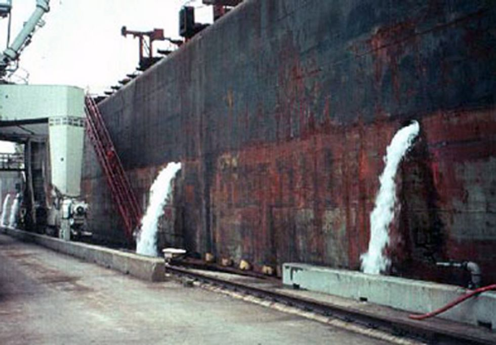 New Ballast Discharge Standards Won't Protect Waters from Invasive Species