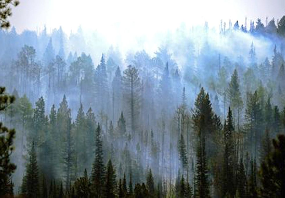 Sierra Club Applauds New Planning Standards to Protect National Forests