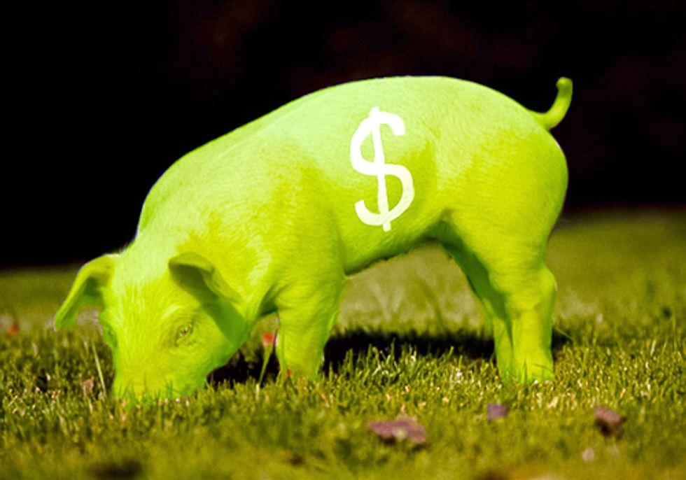 Canadian Hog Industry Abandons Genetically Engineered 'EnviroPig'