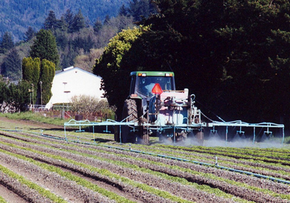 Pesticides Threaten Aquatic Species in the Wildest Stream in the West