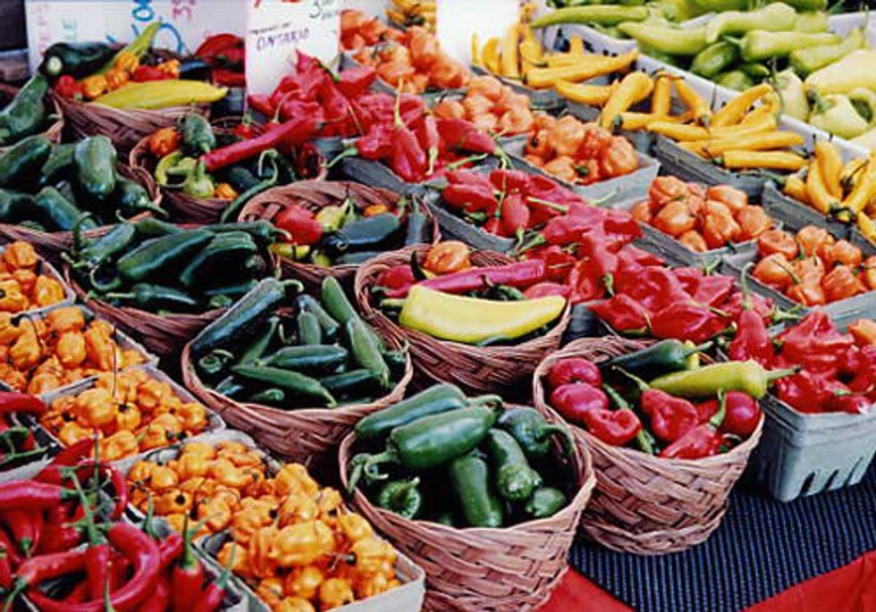 Linking Urban Waste with Local Food Systems