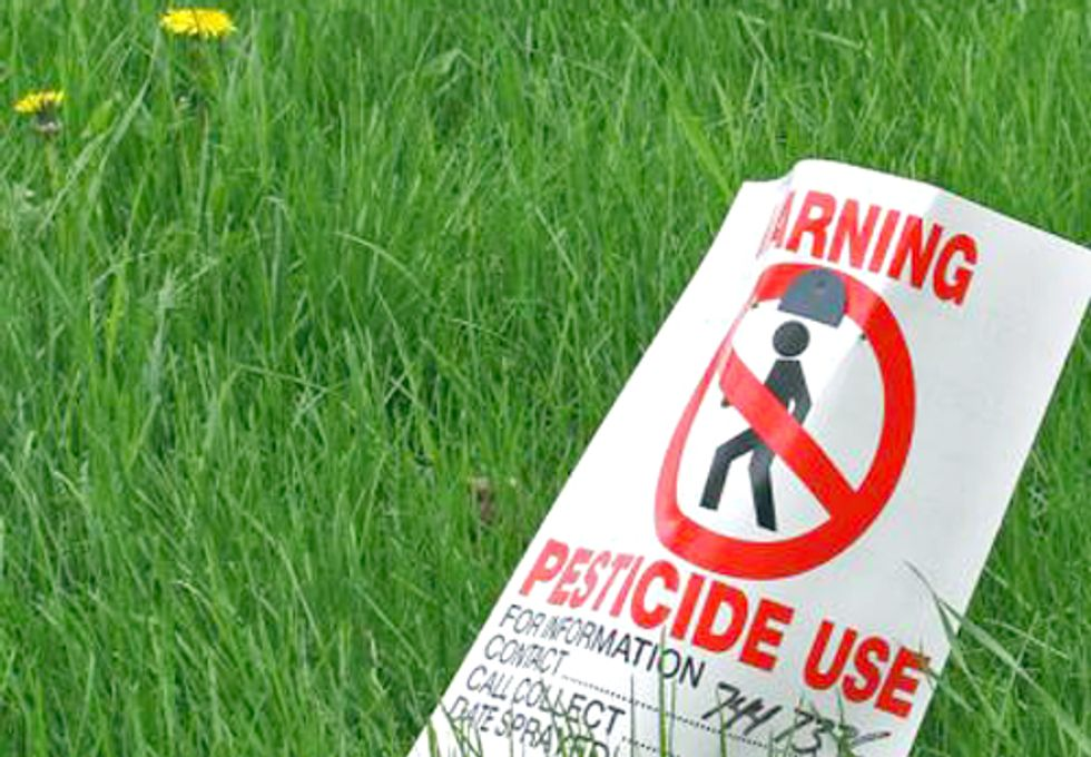 Common Pesticides Associated with Lower Birth Weight and Shortened Pregnancy