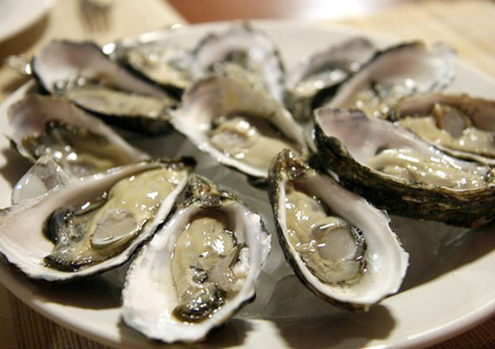 Study Links Massive Oyster Die-offs in Northwest to Ocean Acidification