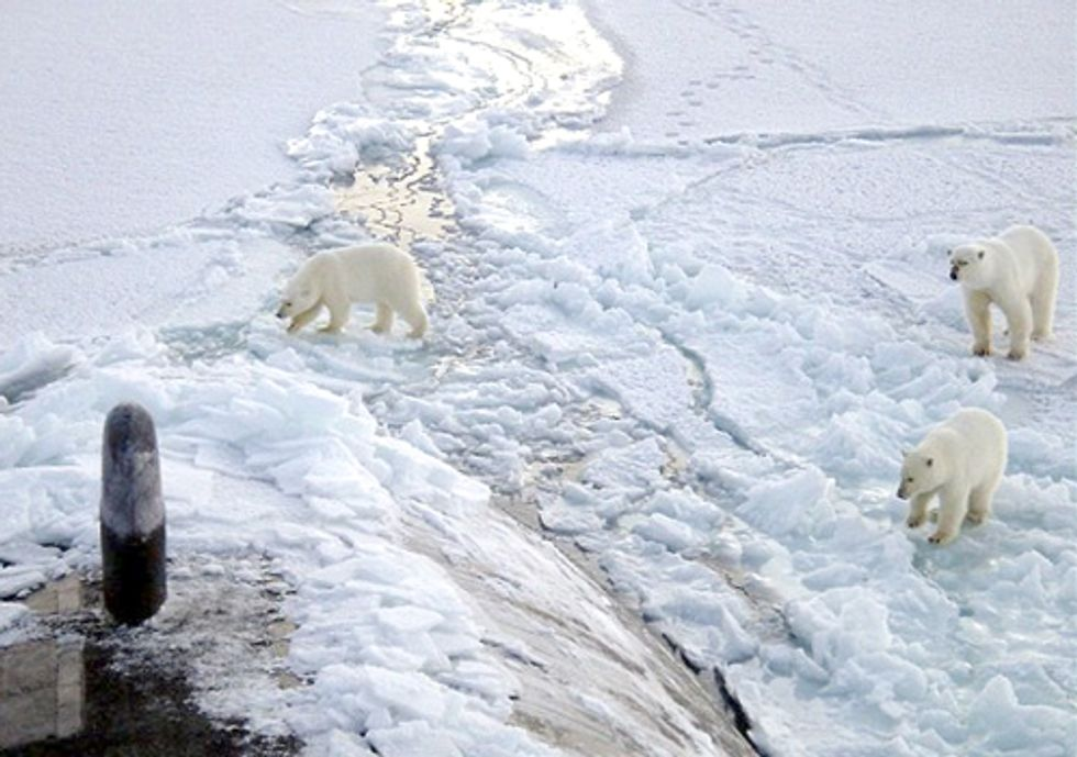 Lloyds Warns of Arctic Drilling Risk