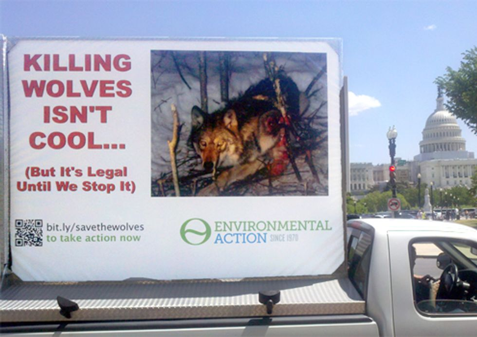 Rolling Ad Confronts Politicians with the Face of Wolf Killing