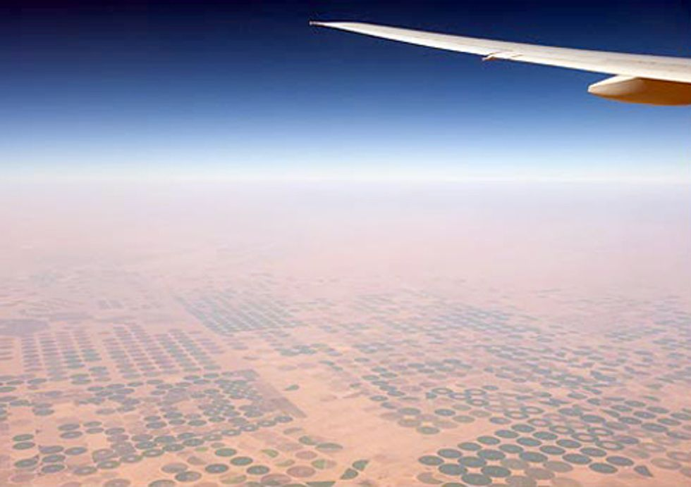 Arab Grain Imports Rising Rapidly