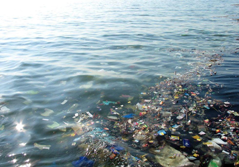 Plastic Trash Is Altering Ocean Habitats in Unexpected Ways