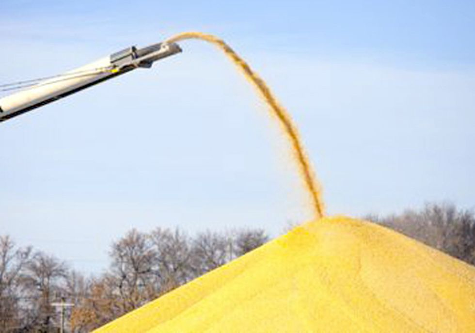 Lawmakers Call on FDA for Action on Antibiotics in Ethanol Production