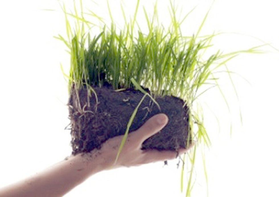 NRDC Announces the Winners of the 2012 'Growing Green Awards'