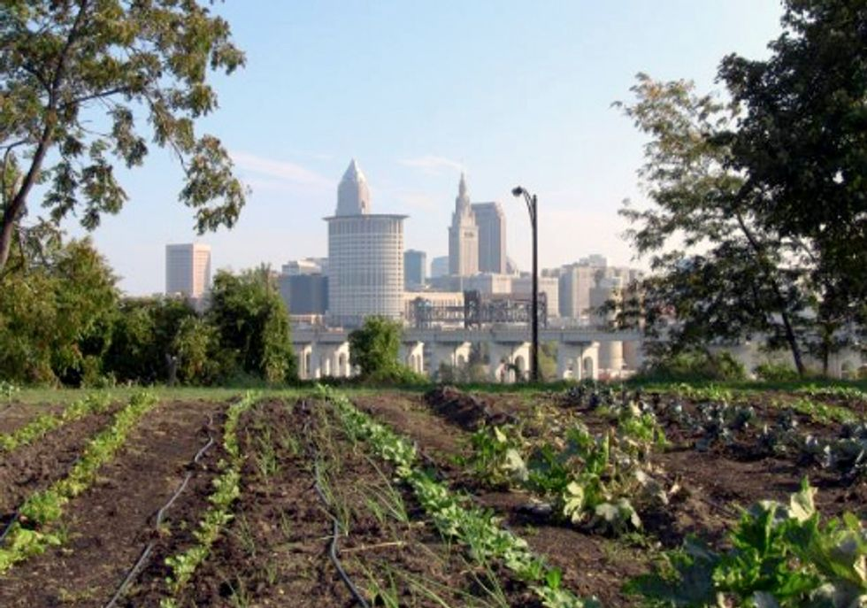 How Urban Farming Can Transform Our Cities—And Our Agricultural System