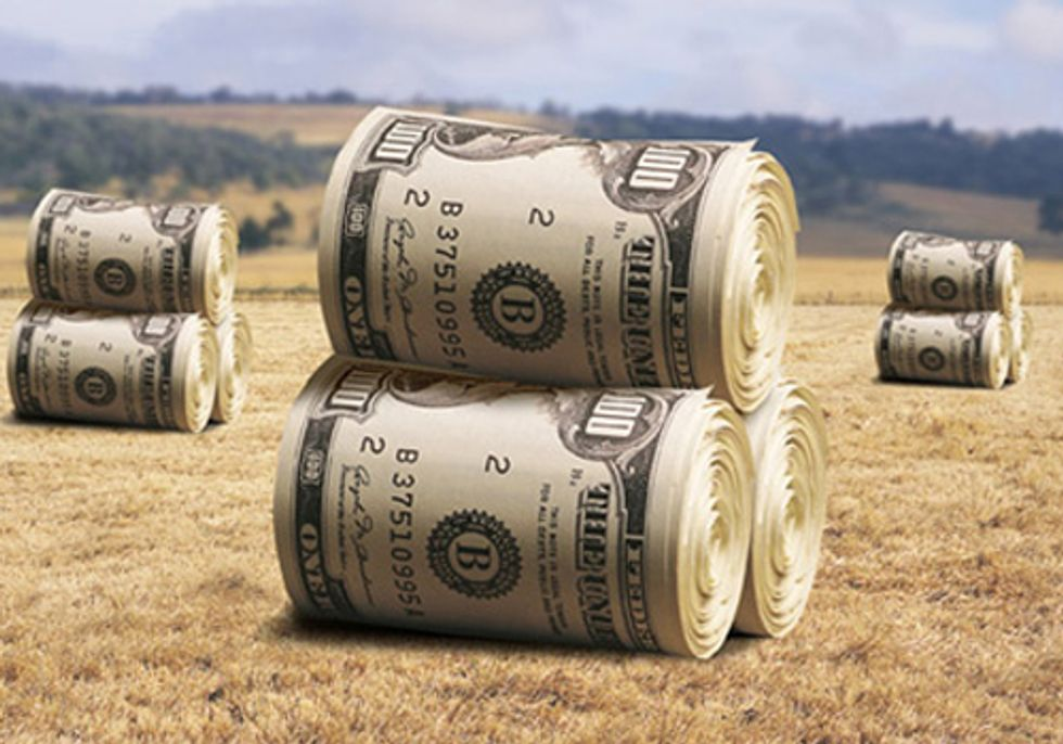 Congress Doesn't Want You to Know Which Farm Operations You're Subsidizing