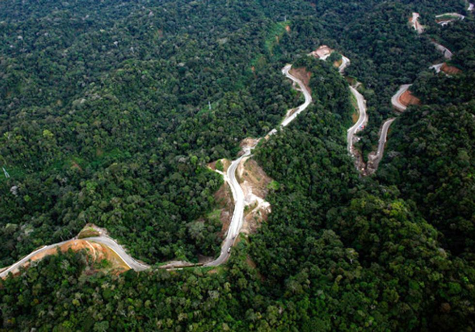 Highway through Amazon Worsens Effects of Climate Change and Provides Mixed Economic Gains