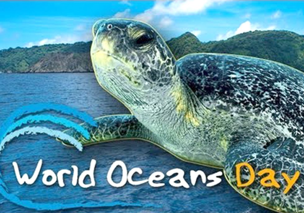 World Oceans Day Focuses on Surging Youth Activism