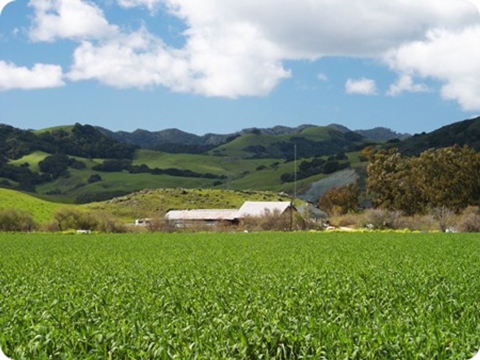 56 Organizations Urge Congress to Protect Agricultural Conservation
