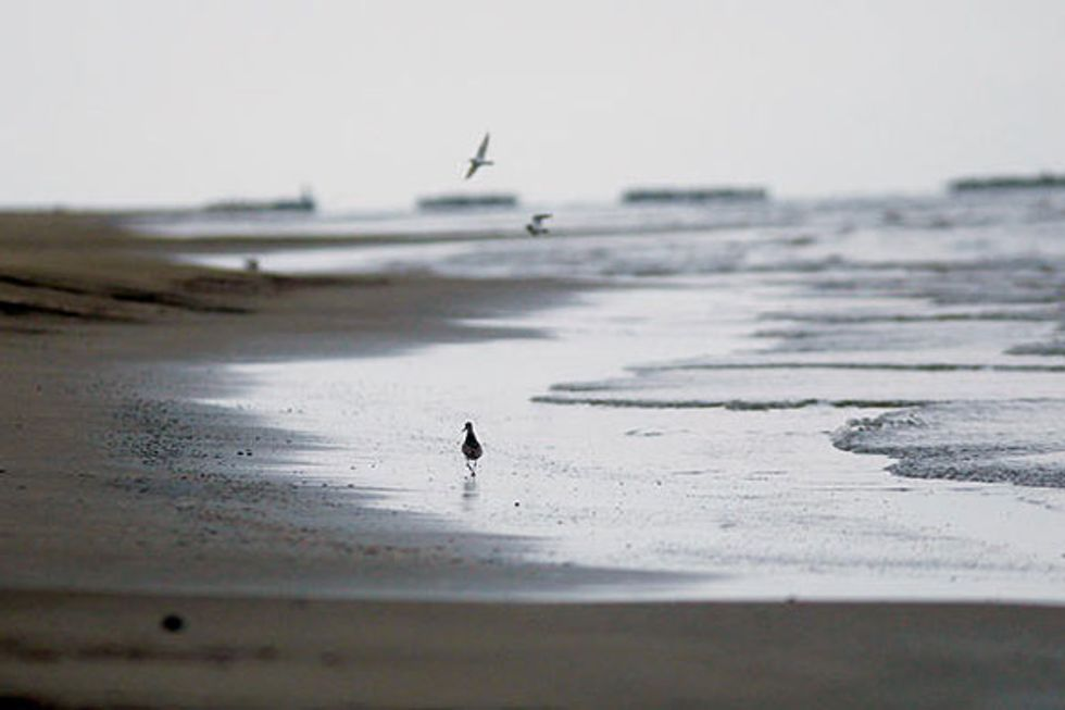 State of the Gulf Report Released by Save Our Gulf Waterkeepers