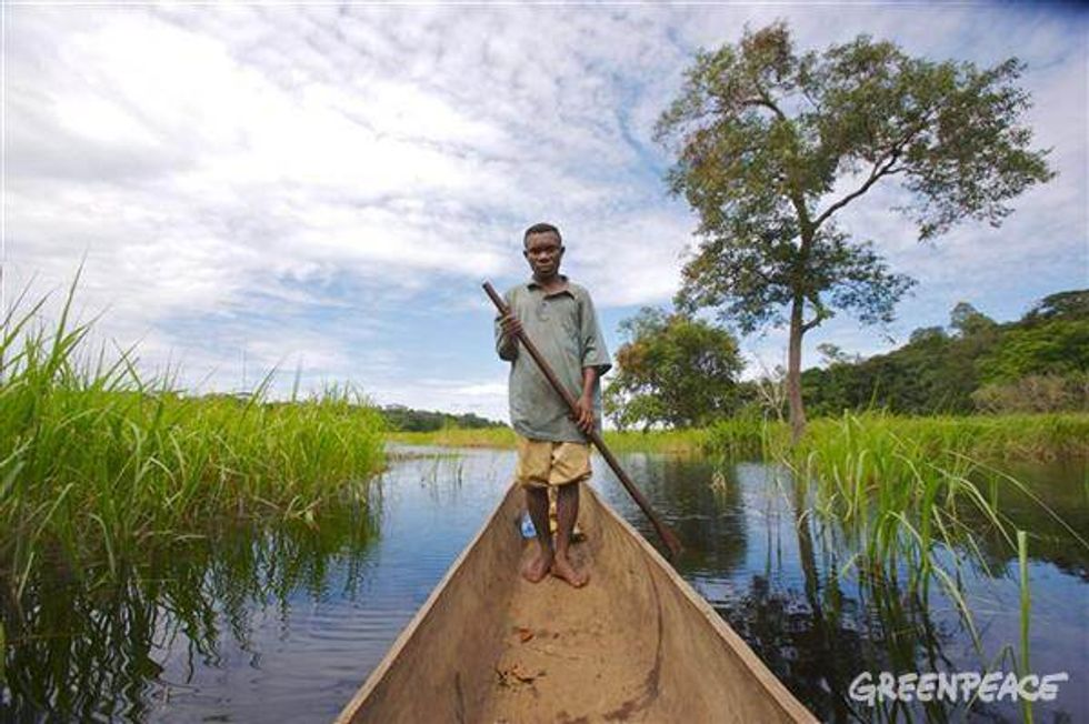 Logging in the Congo Exacerbates Poverty and Leads to Social Conflicts
