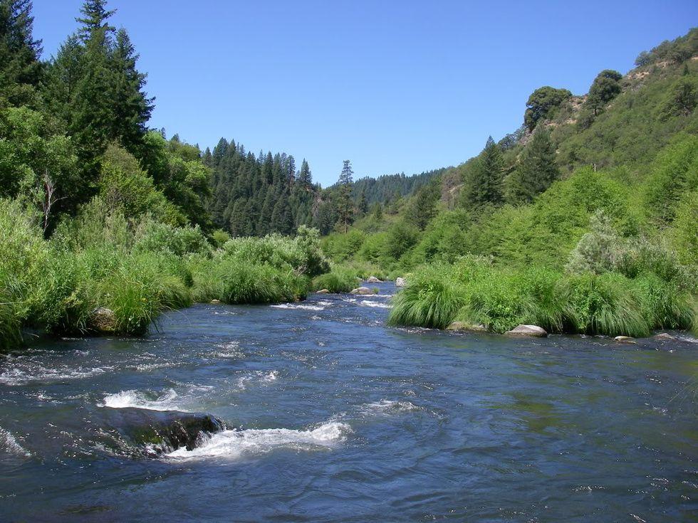 Senate Threatens Clean Water with Pesticide Amendment