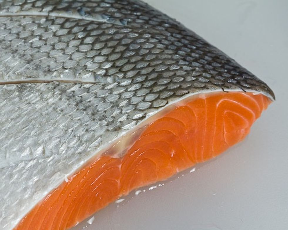 GE Salmon Clears Another Hurdle
