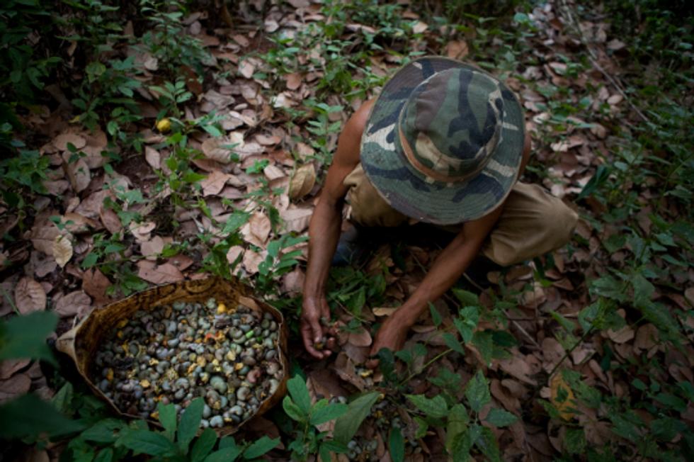 Environmental Trends Threaten Global Progress for the Poor