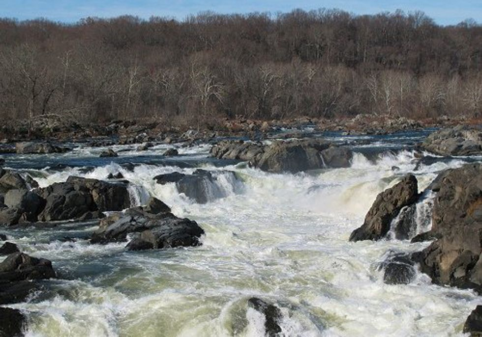 Clean Water Victory Opens Courtroom Doors in Maryland