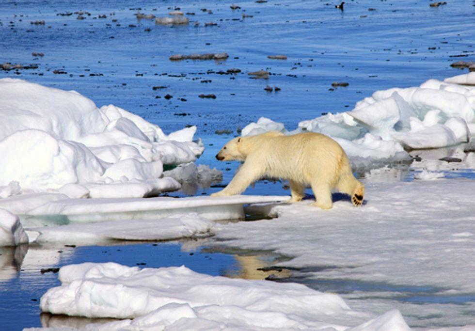 Obama, Suspend Arctic Ocean Drilling