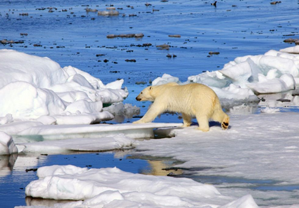 Obama, Suspend Arctic Ocean Drilling