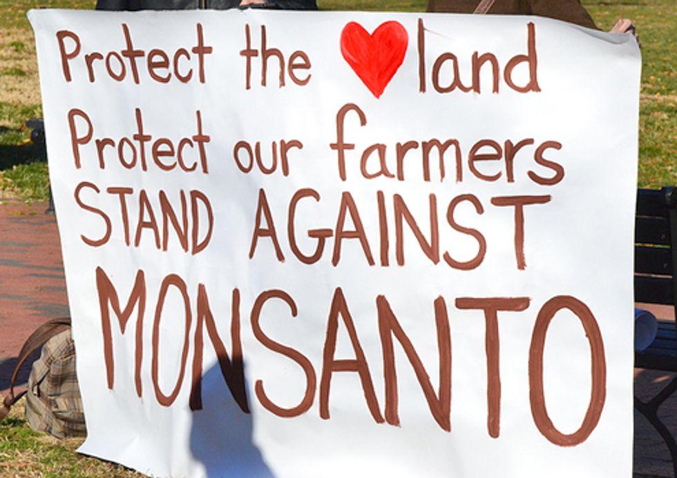 Hundreds Protest Demanding Monsanto End Intimidation Campaign Over GMOs and Obama Halt Approval of GE Foods