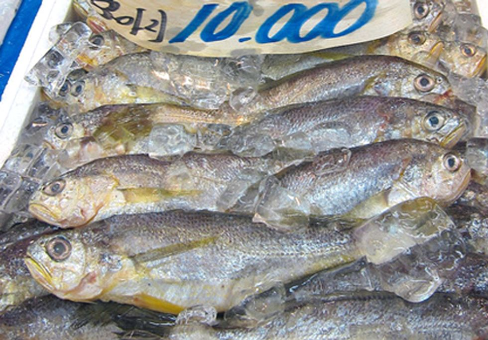 Seafood Mislabeling: How Does it Impact You?