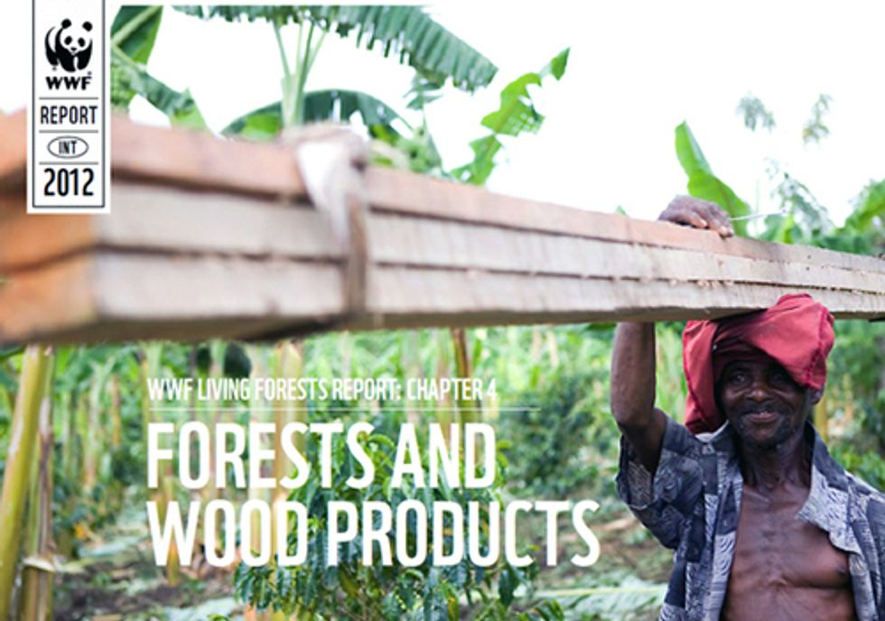 Ecosystems at Risk as Demand for Wood Products Soars Worldwide