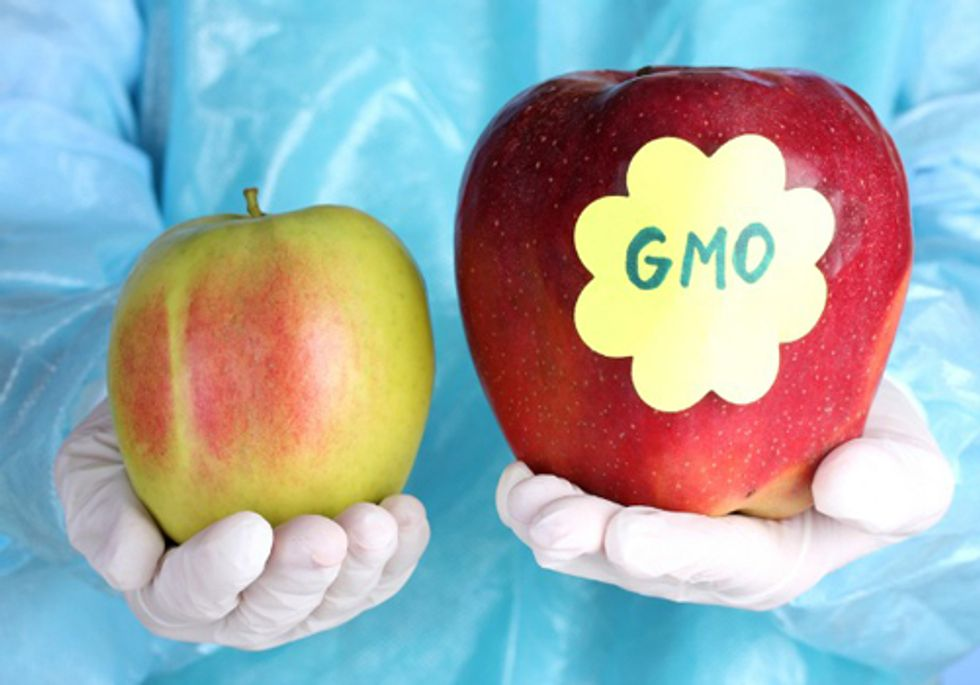 Two States Introduce Bills Requiring Genetically Engineered Food Labels