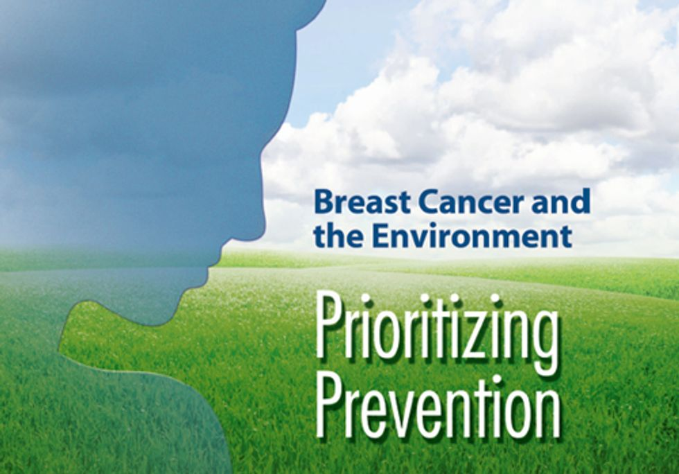 Prevention as Cure: Breast Cancer and the Environment