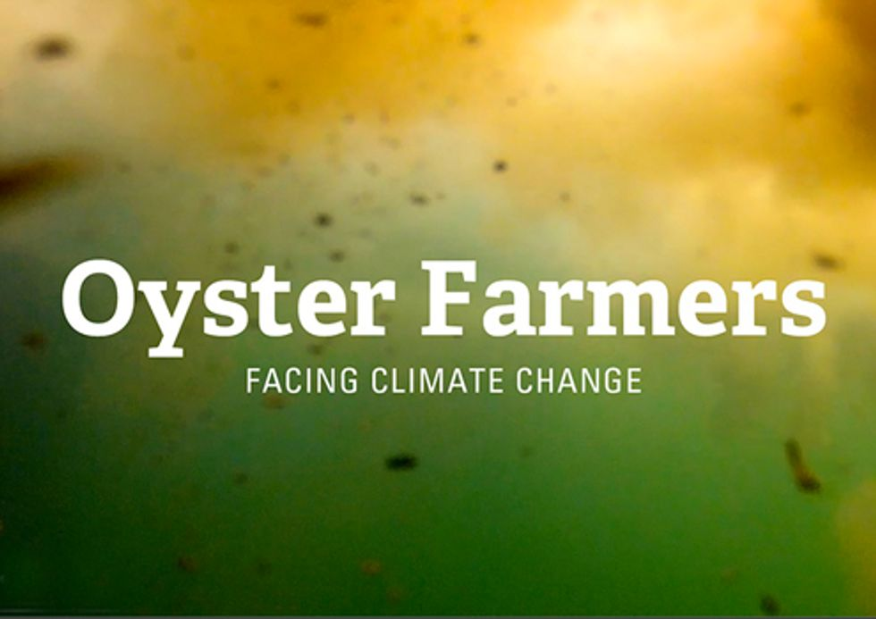 VIDEO: Facing Climate Change—How Ocean Acidification is Impacting Oyster Farmers