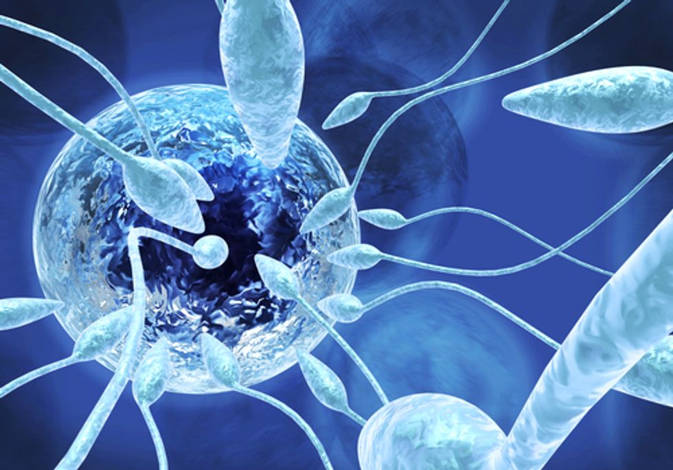 Scientists Warn of Sperm Count Declines Linked to Pesticide Exposure