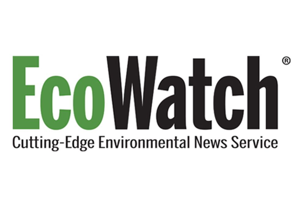 EcoWatch is Hiring